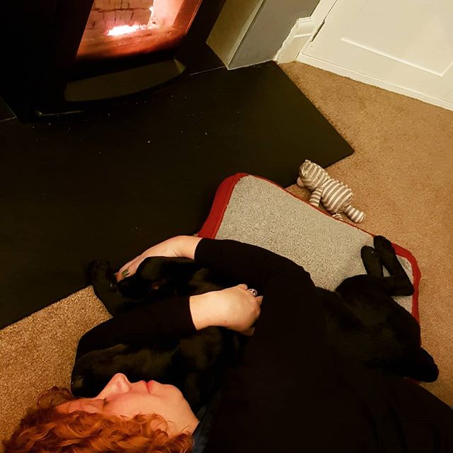Happiness is a warm dog. #larrybstanding