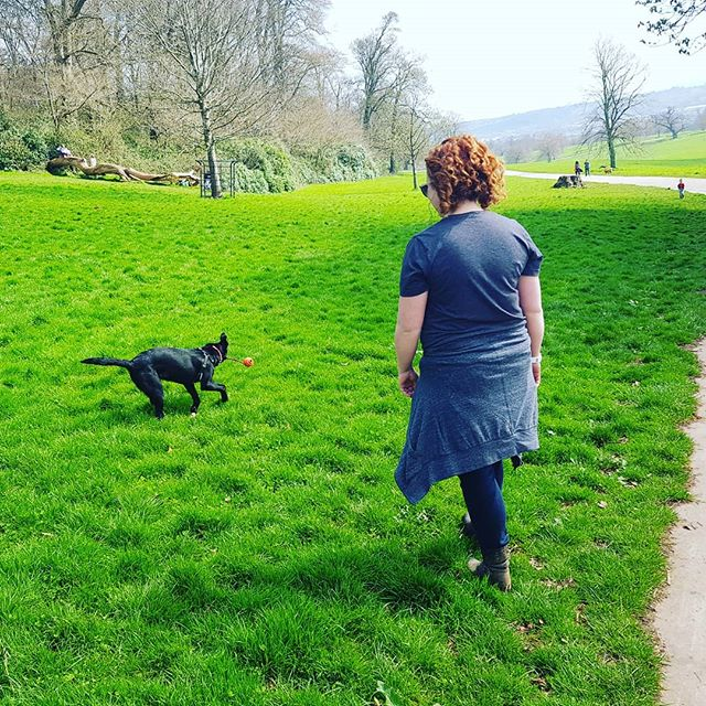 Capitalising on a sunny moment. #larrybstanding #greenandpleasant #caninejamboree