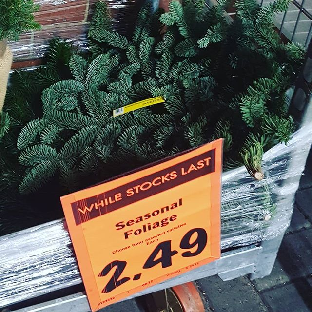 Seasonal foliage. Yes, for a mere £2.49 you can buy a branch that was accidentally torn off a Christmas tree by a heavy-handed delivery man.