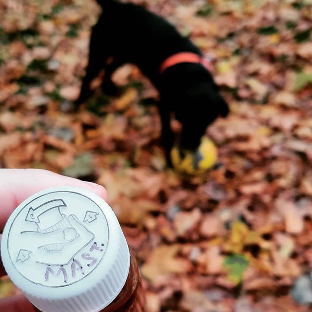 "Yesterday's #dogwalkingdram - I've no idea what it was, tbh. A rando sample bottle that someone wrote ""MAST."" on the top of. Tasted cognacy. I think. Any ideas, anyone? Recognise the handwriting? Larry didn't seem to let it affect him. #mystery #larrybstanding"